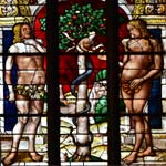 Detail of the stained-glass Eden of Arnaud de Moles