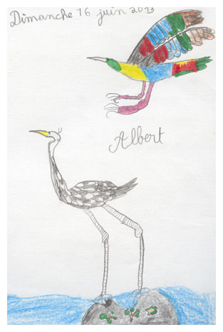 Albert's brightly-coloured birds