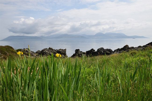 Looking across to Arran from the Kintyre shoreline