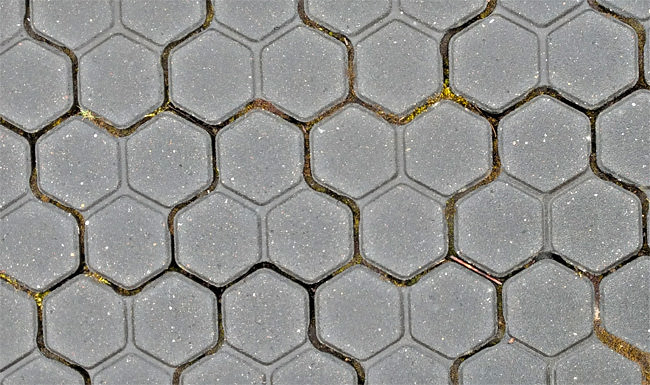 Even the Causeway's car park has hexagons!