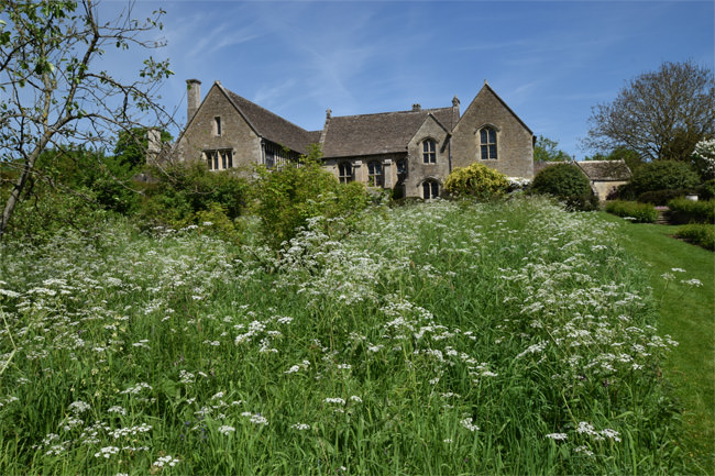 Great Chalfield Manor - a haven for wildlife