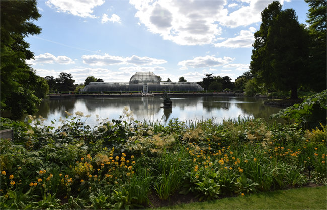 Kew's Palm House seen from The Botanical