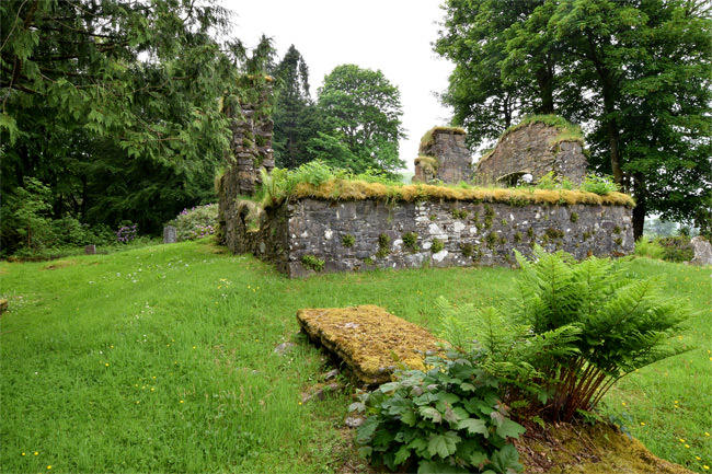 The remains of Saddell Abbey