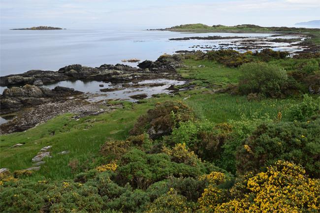 Kildonan Bay with Ailsa Craig visible on the horizon