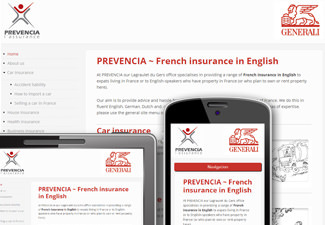 French Insurance in English - with cartoons