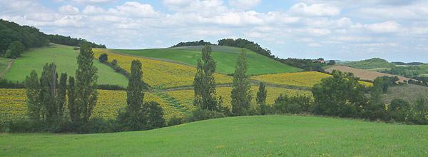 Rural broadband country